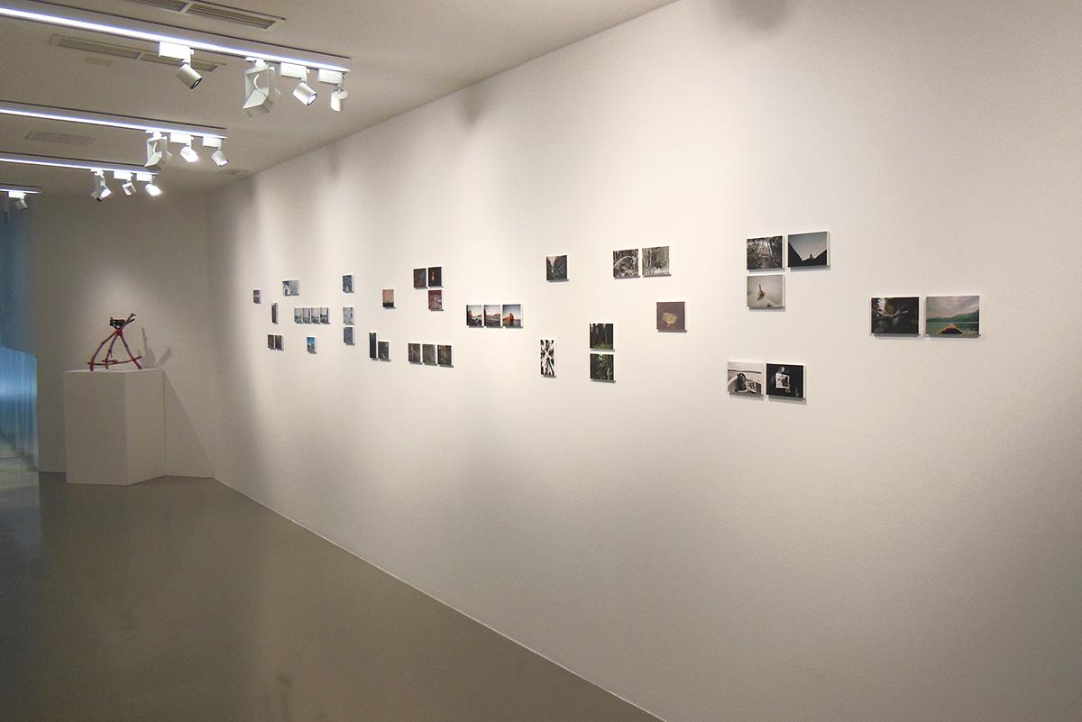 Daniele Girardi, foto archivio, fotografia contemporanea, opere, art work, photo archive, wilderness, artista contemporaneo, visual artist, Marta museo