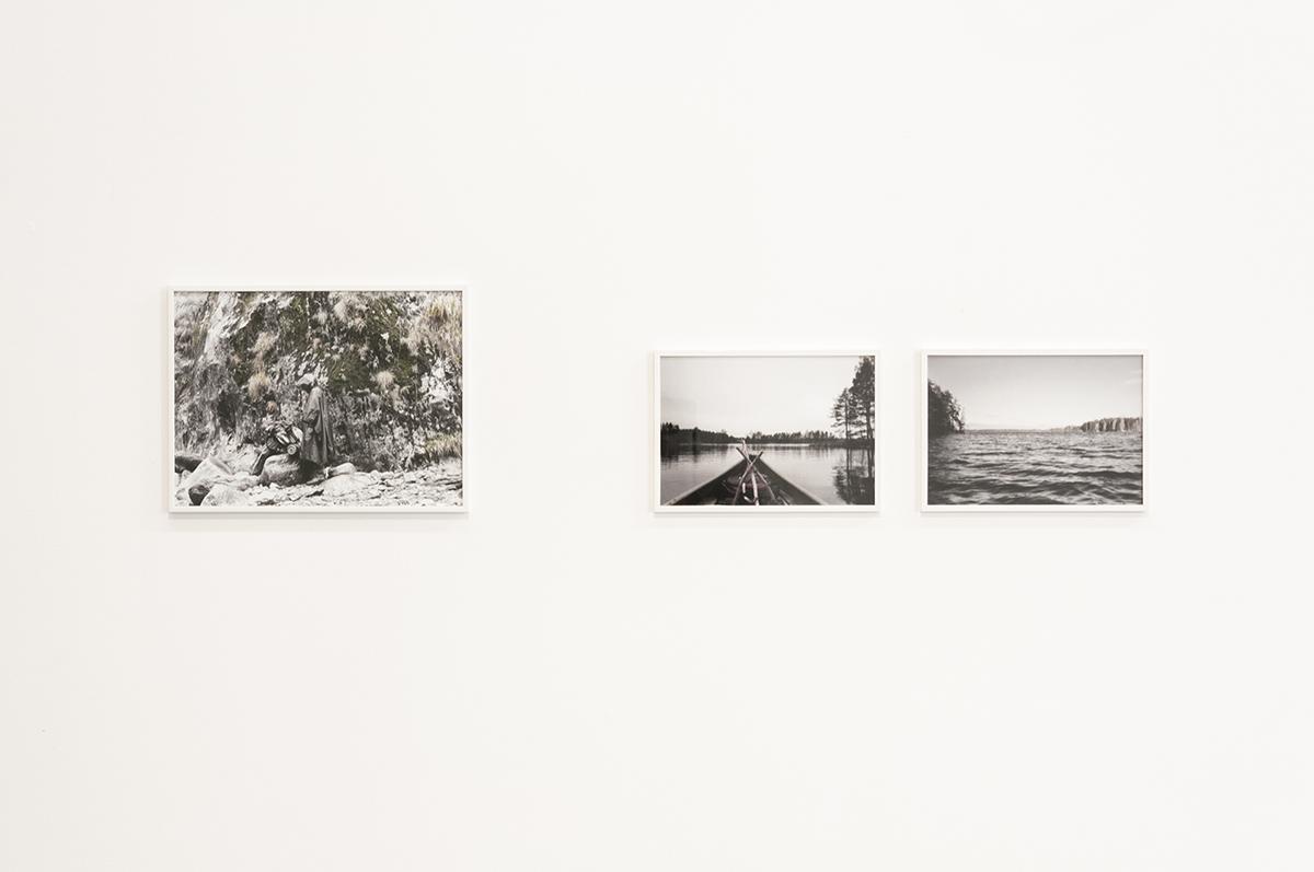 Daniele Girardi, Cronache Selvatiche, installazione, fotografia, OttoZoo Gallery