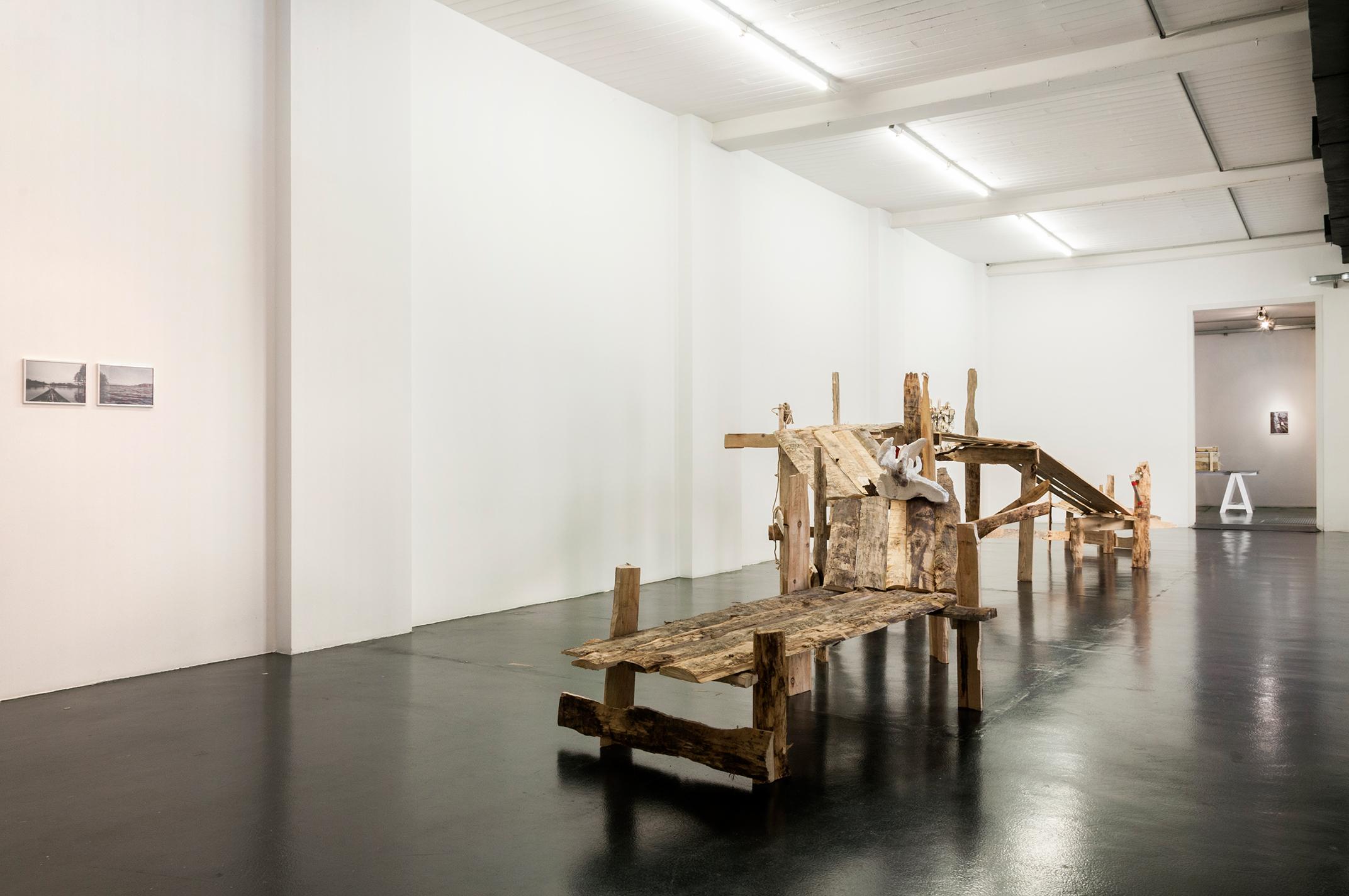 Daniele Girardi, Cronache Selvatiche, installazione, site-specific, artwork, opera, art installation