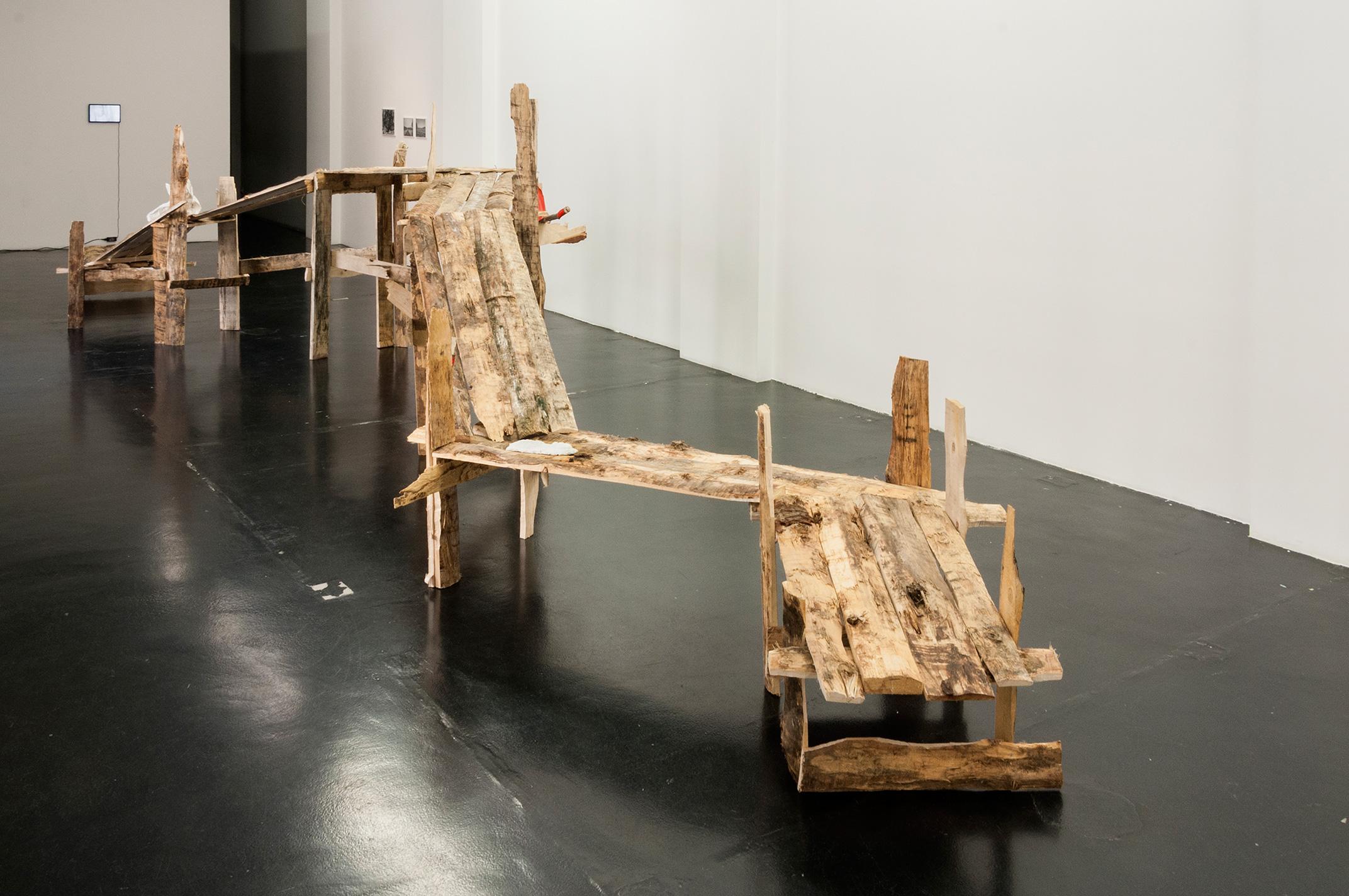 Daniele Girardi, Cronache Selvatiche, site-specific installation, installazione