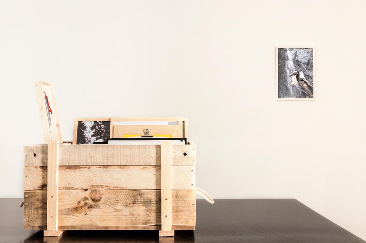 Daniele Girardi, Cronache Selvatiche, art exhibition, installazione, art installation